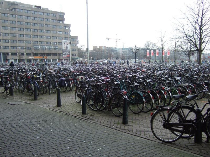 Bikes at the Hague central station