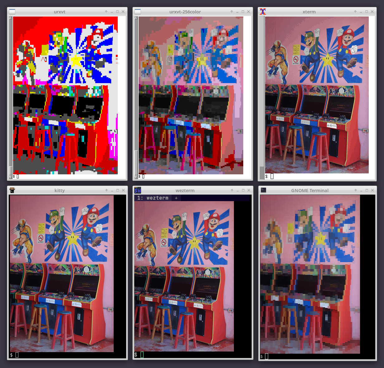 Comparison of Chafa graphics in various terminals